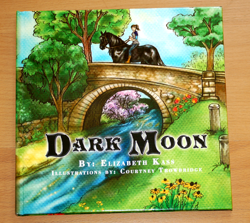 Dark Moon1